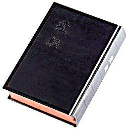 biblechinese-3